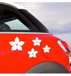 Sticker Fleurs étoiles