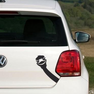 Sticker Autruche - stickers animaux & autocollant voiture - stickmycar.fr
