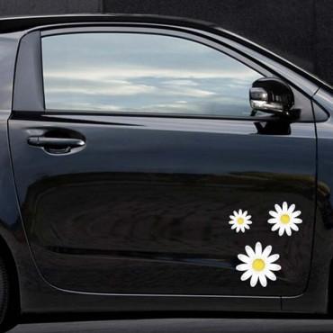 Sticker Fleurs marguerite - stickers fleurs & stickers auto - stickmycar.fr